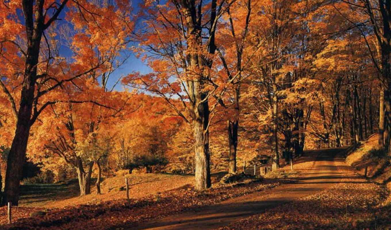 осень, осени, где, time, песни, февр, своими, пейзажи -, small,