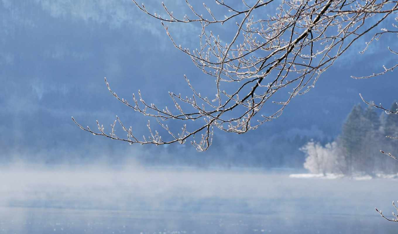 иней, туман, winter, озеро, definition, need,