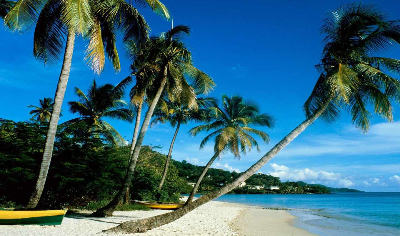 рождения, grenada, suratebi, hotel, море, business, getaway, пляж,