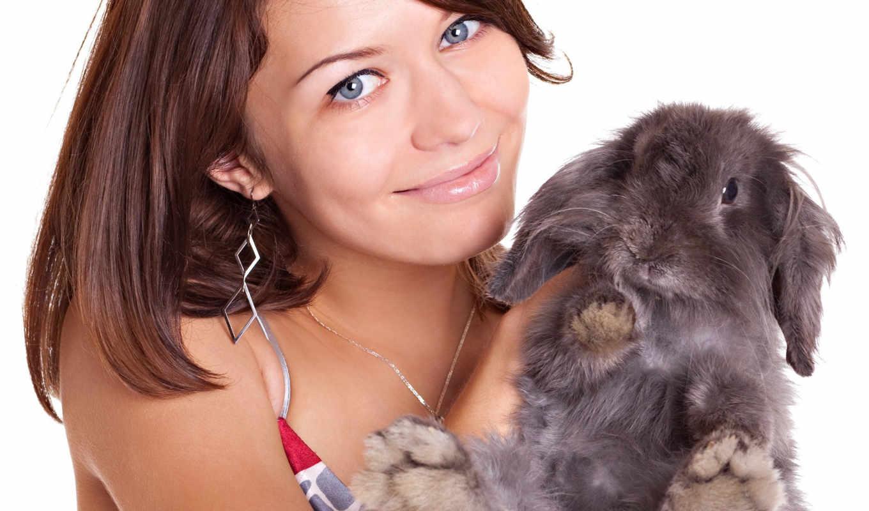 кролики, кролик, кроликов, фото, stock, easter,