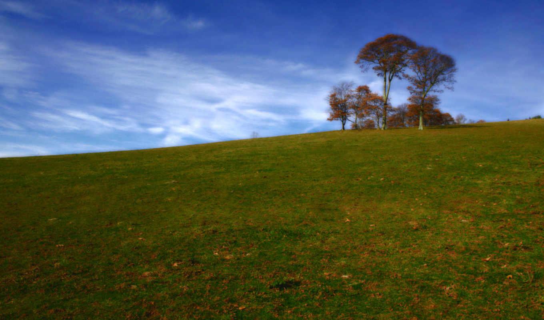 луг, hill, дерево, indian, desktop, fantasy,