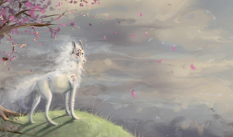 art, волк, обрыв, символы, Сакура, дерево, hill, животные,