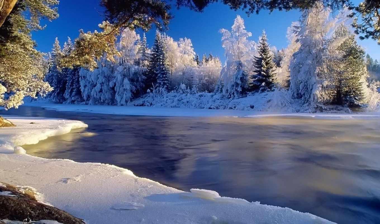winter, дек, природа, краски, зимой, time,