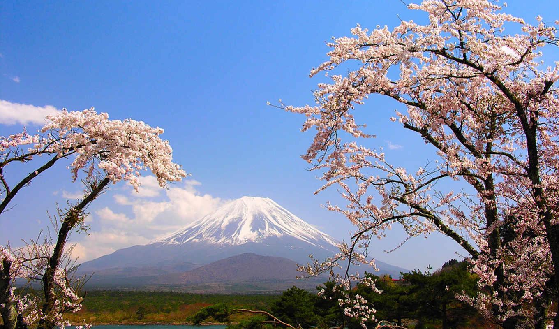 япония, японии, природа, фоны, природы,
