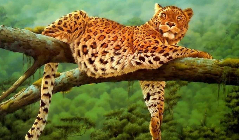 кошки, большие, дикие, jaguar, zhivotnye, фотографий, заставки, леопард, красивые,