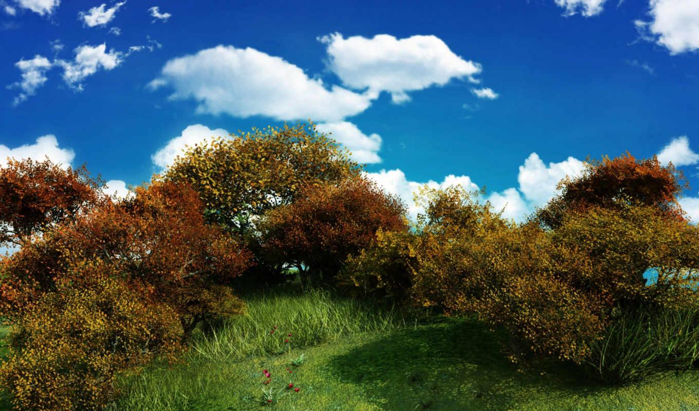 изображение, кустов, free, облака, куст, зелень, небо, desktop,