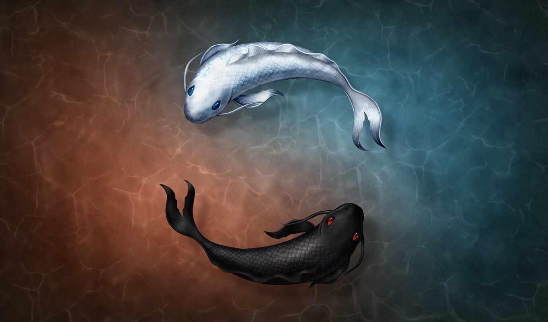 арта, yin, white, sign, yanit, fish, яна, черная, форма, символ