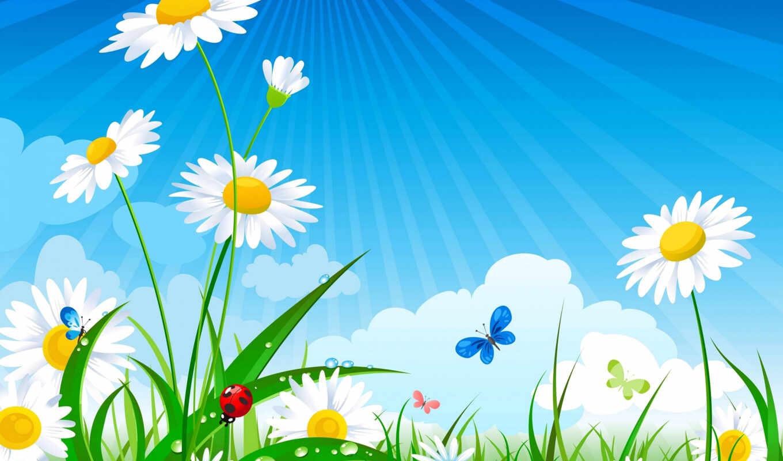 ромашки, cvety, интернет, фоны, summer, поле, png, бабочки, яndex, материалов, клипарты,