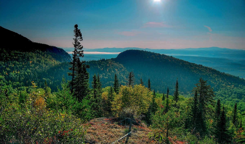 manzara, mountains, resimleri, природа, небо, trees, doğa,