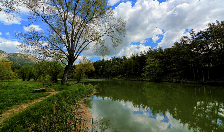 francia, naturaleza, дерево, франция, лес, озеро, water, francii