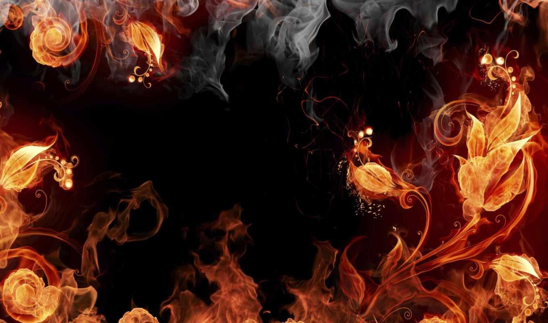 цветы, fire, огненные,