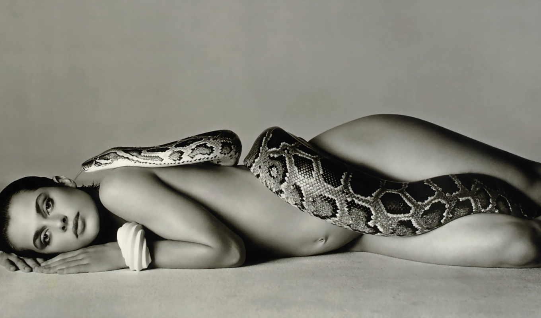 cobra, que, кински, leite, snake, настасья, прекрасная,