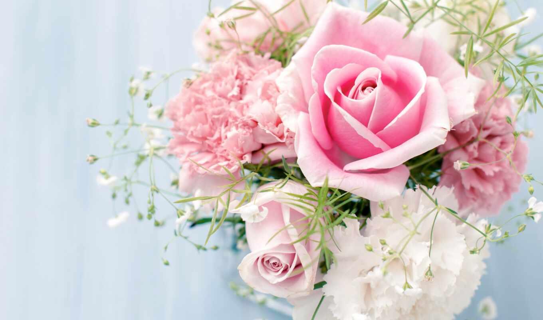Картинка цветы белые