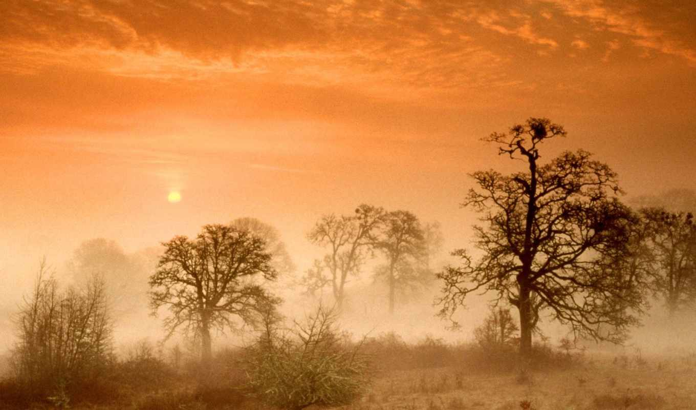 elements, красивый, природа, восходы, вычислить, pictures, мира, февр, photogallery, стоимость,