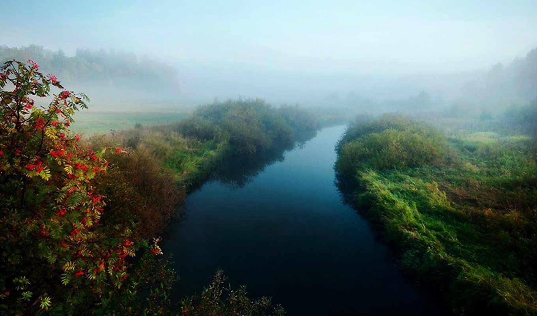 рябина, landscape, природа, осень, река, туман, latyrx,