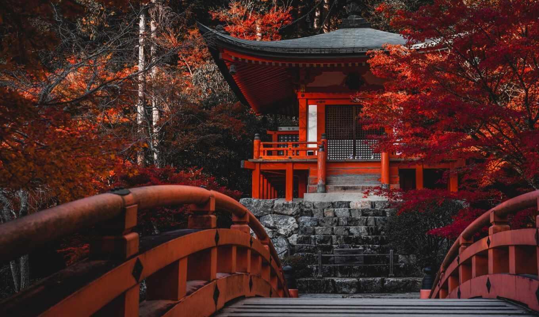 храм, япония, kyoto, bentendo, wi-tynia, buddhist, осень, дерево, shingon, japanese