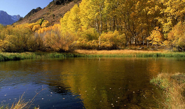 озеро, девушки, автомобили, yellow,