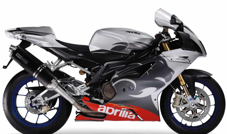 rsv, aprilia, factory, мотоцикл, mille, чертежи, рисунки, size, мотоциклы,