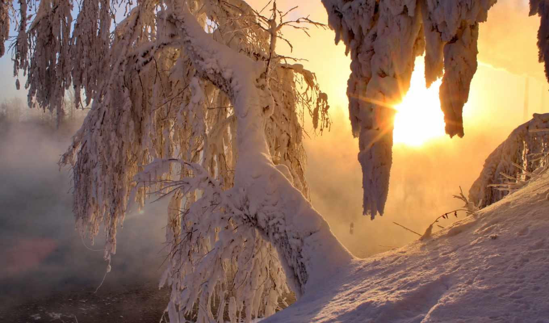 winter, снег, лучи, деревья, утро, света, рассвет, sun, рейтинг, лед,