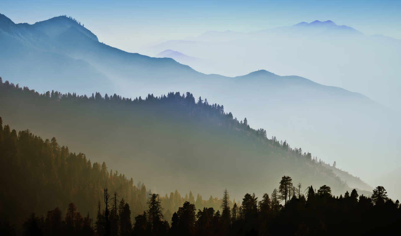 природа, apple, лес, landscape, trees, тумане, yosemite, горы, эпл,