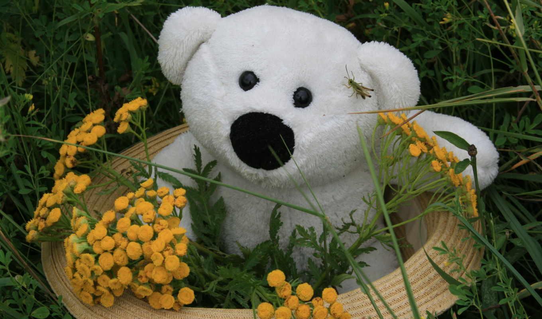 teddy, teddys, toys, медведь, bears, animals, нояб, paintings, nita,