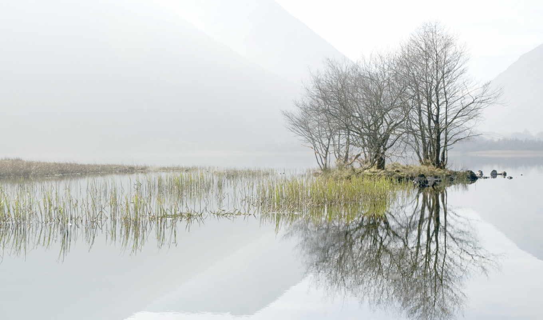 утро, туман, пейзаж, деревья, озеро, картинка,