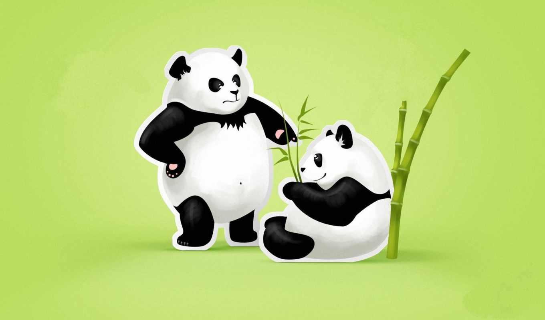 панда, панды, бамбук,