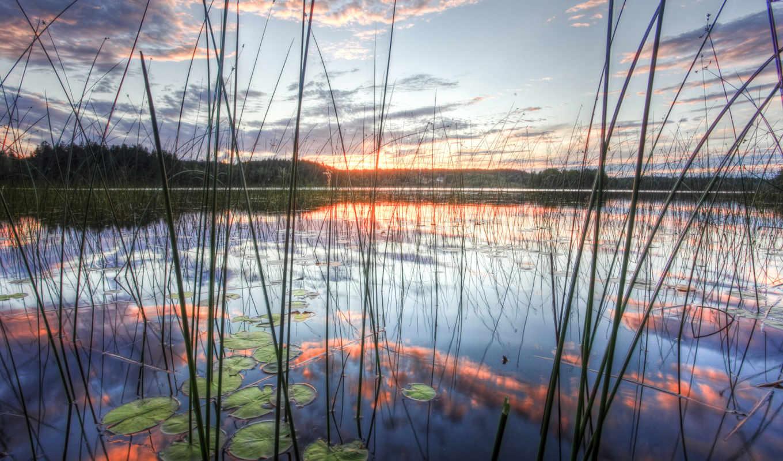 небо, отражение, природа, озеро, камиш, картинка, картинку, правой, кнопкой,