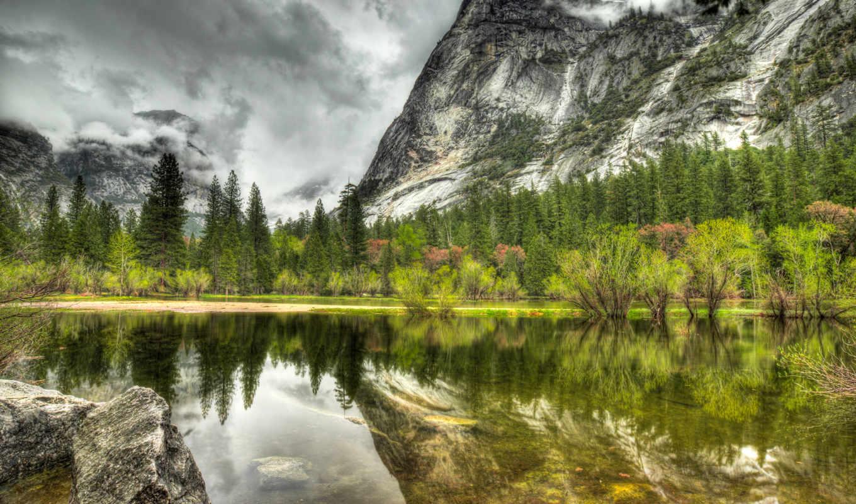 природа, лес, озеро, landscape,