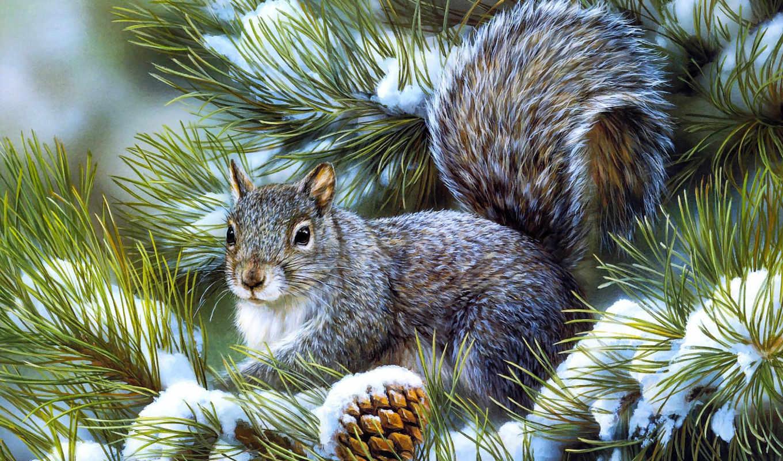 pine, winter, белки, art,