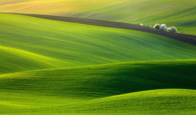 трава, холмы, природа, you, бы,