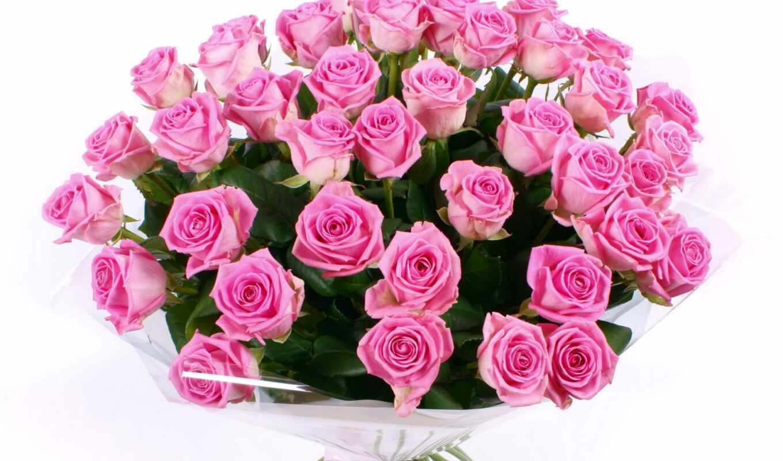 розы, цветы, букет, розовые, красивый, hintergrundbilder, sprache, die, der, liebe, rosen, rosa, download, вас, роз,
