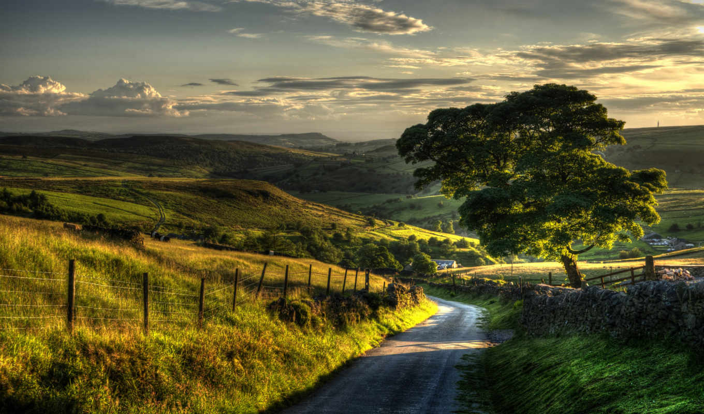 природа, пейзаж, дерево, деревья, road, деревню, village, desktop, картинка, картинку, забор,