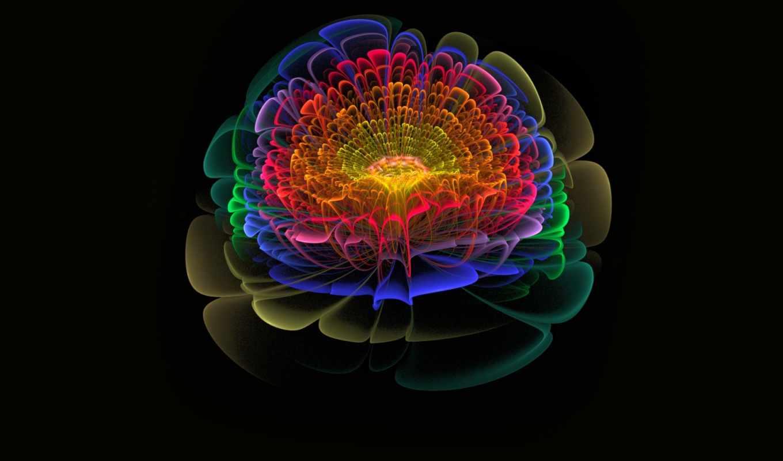 пожалуйста, you, fractals, raw, взгляд, resources, jwildfire, tools,