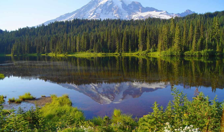 книга, ли, озеро, начало, case, гора, славный, fore, empress, son