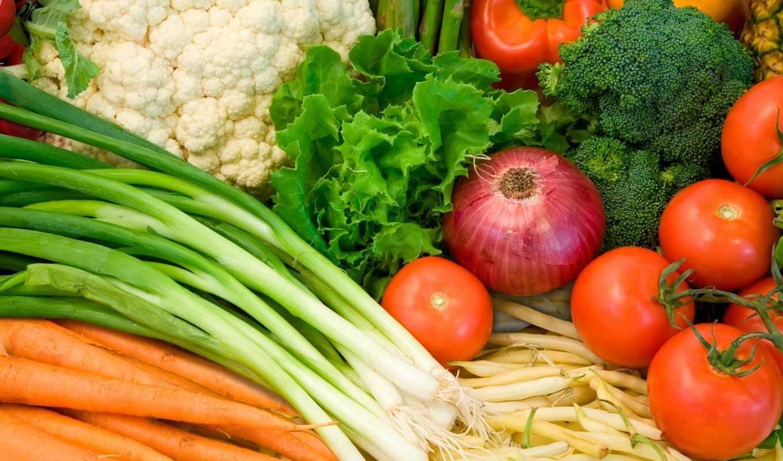 лук, овощи, морковь, помидоры, еда, брокколи, перец, vegetables, onions, wallpaper, картинку, правой, кнопкой, to,