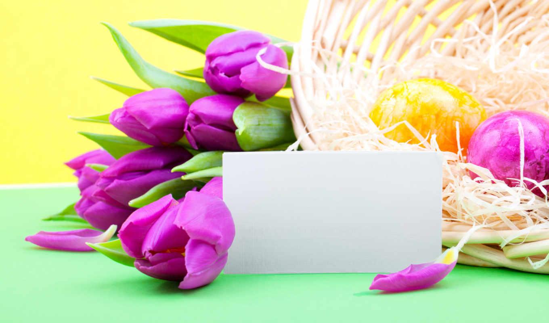 цветы, easter, весна, тюльпаны, праздник, сиреневые, яйца,
