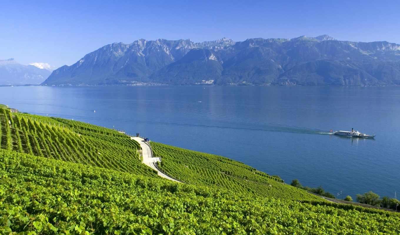 горы, лето, озеро, альпы, швейцария, картинка, картинку,