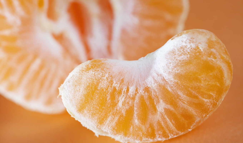 мандарины, спелые, дереве,