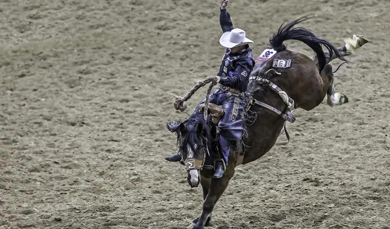 июня, ковбой, лошади, rodeo, живопись, замки, fondos, спорт,