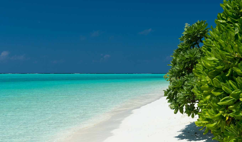 пляж, desktop, maldive, maldives, высоком, разрешений,