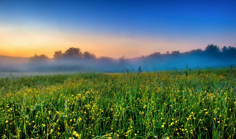 природа, заставки, небо, туман, картинку, пейзажи -, поле, цветы,