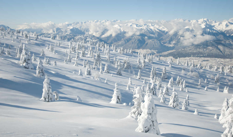 деревья, зима, горы,
