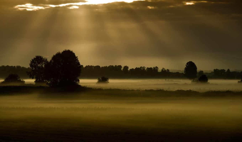 поле, ночь, туман, landscape,
