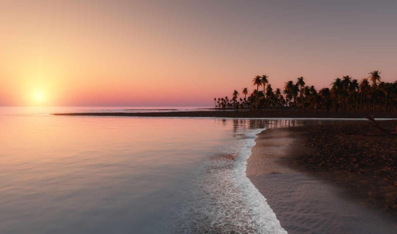 ocean,  пальмы, пляж, красивый