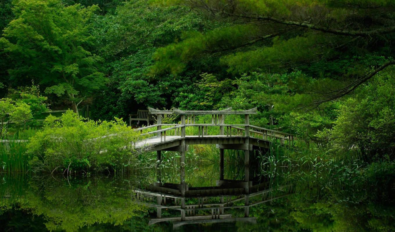 природы, уголками, прекрасными, природа, разное,