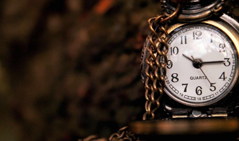 часы, механизмы, макро, часовые,