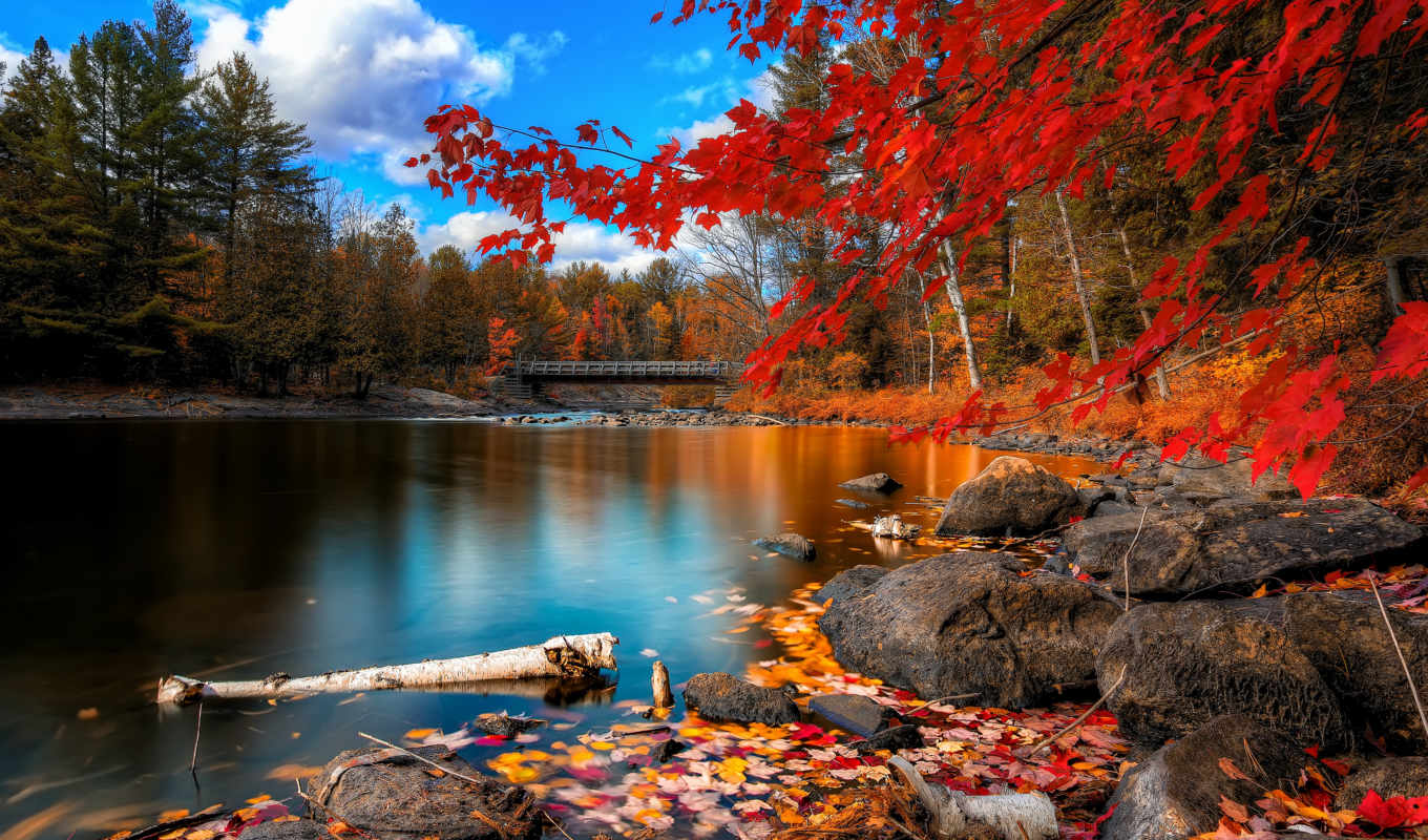 you, resolution, want, red, nature, lakes, landscapes, bright, fall,