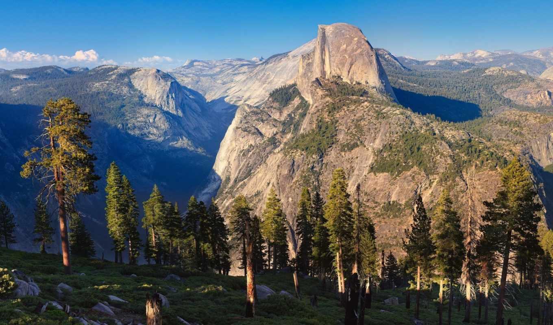 горы, сосны, yosemite, national, природа, iphone, деревья, склоне, park, картинку, утро, пейзаж, download,