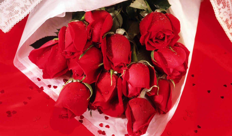 цветы, розы, букет, букеты, цветов, красные,